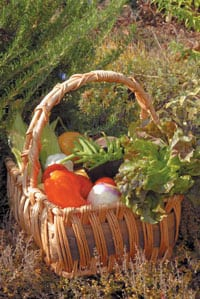 Grow flowers and herbs among your vegetables, and tuck a variety of vegetables into your flower bed. The end result is sure to be a more beautiful, sustainable and bountiful garden.