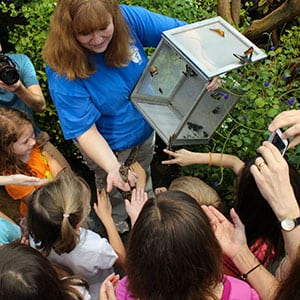 Children flock to see butterflies up close with Tennessee Aquarium entomologist Jennifer Taylor. Source: Tennessee Aquarium, Chattanooga