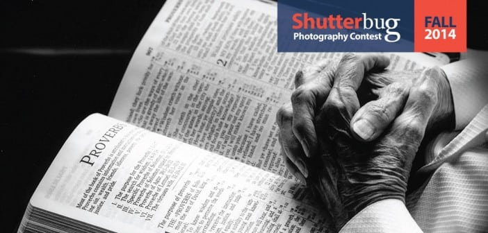 Family Ties Shutterbug Winners