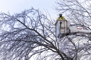 A lineman for Duck River Electric Membership Corporation removes debris and fallen trees near Lawrenceburg.
