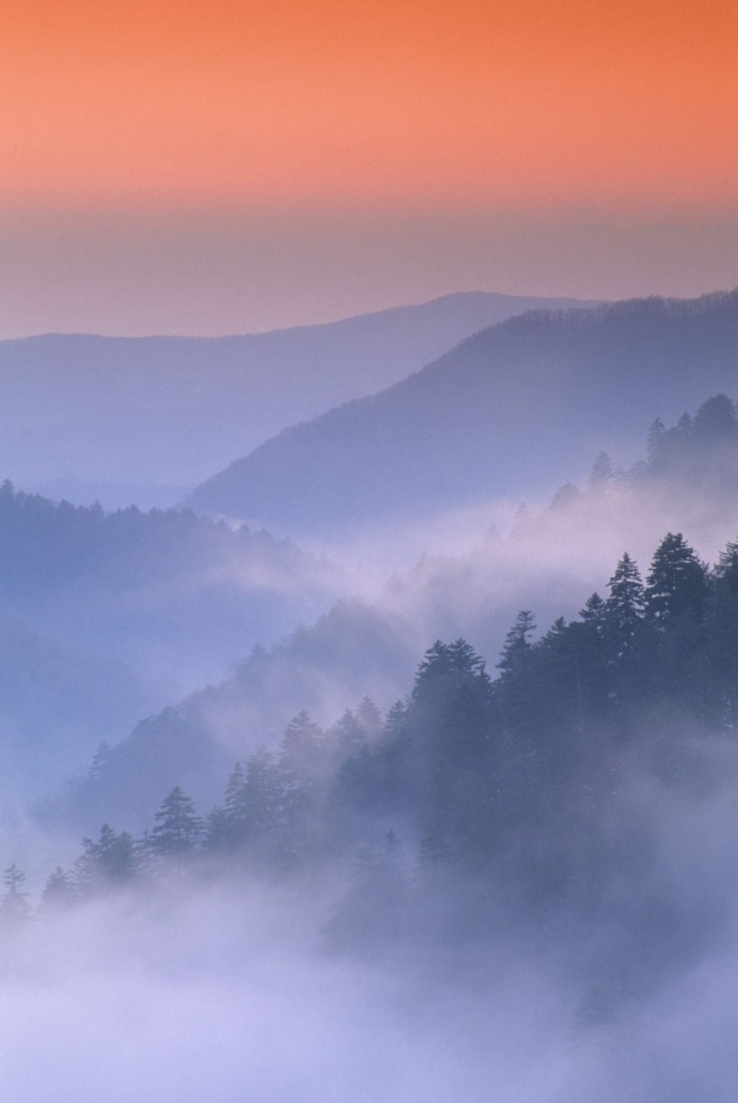 Mist swirls amongst the ridges and valleys of the Great Smoky Mountains as viewed from Morton Overlook.