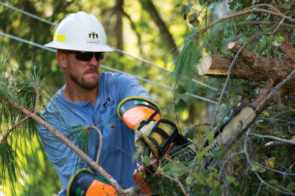 Middle Tennessee EMC's Jimmy Grant chainsaws a downed tree