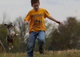 Shutterbug Showcase: Pets –Finalists
