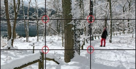 Shutterbug Contest: Rule of Thirds