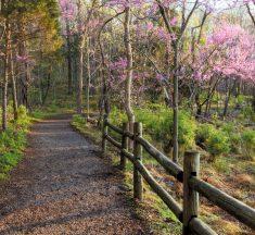 Shutterbug Showcase: Natural Areas